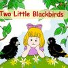 Two little blackbirds